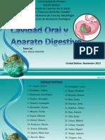 seminario de digestión udo