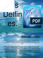 REVISTA Delfines 2013