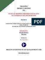 Project Report on Sony Ddepak