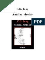 Jung  - Analiza viselor