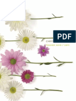 Chrysanthemum Cut Catalogue