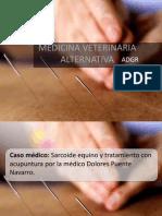 Medicina Veterinaria Alternativa