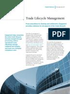 Derivatives markets mcdonald solutions manual