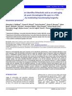 Protein Kinases | Mechanistic Target Of Rapamycin | Protein