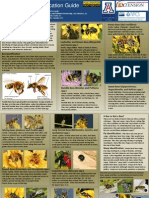 A TO Z BEE GUIDE