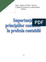 Importanţa principiilor contabile în profesia contabilă