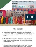 BRLPS_livelihood system