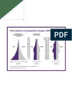 Human population patterns