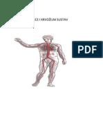 Srce i krvozilni sustavi