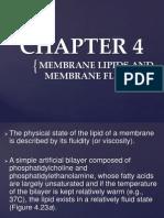 CHAPTER 4 - CELLULAR BIOLOGY