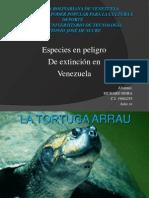 Especies en peligro de extincion RICHARD MORA