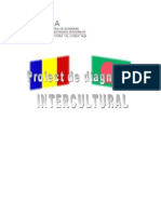 Diagnostic intercultural
