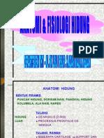 53238423-ANATOMI-FISIOLOGI-HIDUNG.ppt
