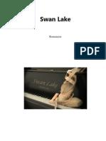 Swan lake Q and A