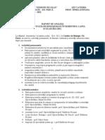 RAPORT DE ANALIZĂ ASUPRA ACTIVITĂŢILOR DESFĂŞURATE ÎN sem I  2012