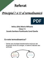 Termodinamica biologica