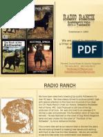 Radio Ranch Rottweilers