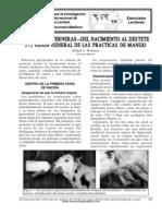 27. CRIANZA DE TERNERAS—DEL NACIMIENTO AL DESTETE . VISION GENERAL DE LAS PRACTICAS DE MANEJO