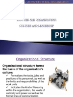 culture and organization