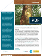 FLA Newsletter Issue 6