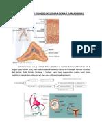 hipogonad dan sindrom adrenogenital