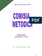 Comisia Metodica -Vica