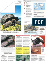 Wildlife Fact File - Reptiles - Pgs. 21-30