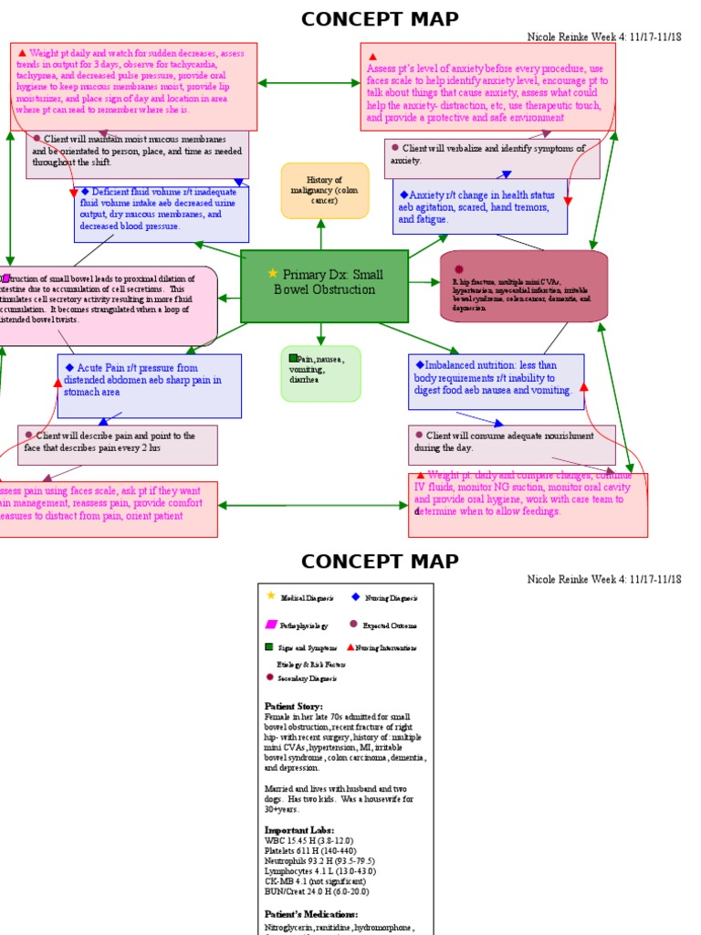 Group Of Nursing Concept Map Copd