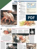 Wildlife Fact File - Primitive Animals - Pgs. 1-10