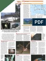 Wildlife Fact File - World Habitats - Pgs. 41-50