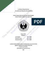 LAPORANPRAKTIKUMAPK.pdf