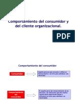 Tema 2 Comportamiento Del Consumidor Internet