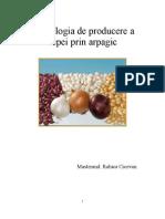 Tehnologia de Producere a Cepei Prin Arpagic