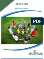 Guide santé psychologique 2012-2013