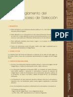 Reglamento Del Proceso 2013
