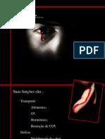 Tecido sanguineo
