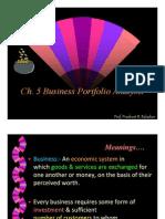 Business Portfolio Analysis