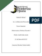 Ensayo Final y Observacion y practica docente I.docx