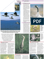 Wildlife Fact File - Animal Behavior - Pgs. 31-40