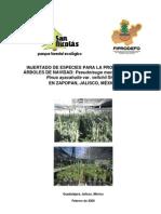 Injertado de Pseudotsuga y Pinus FEB 09