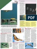 Wildlife Fact File - Animal Behavior - Pgs. 61-70