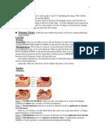 Pathophysiology Cancer/Immune/Skin
