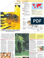 Wildlife Fact File - Insects & Spiders - Pgs. 1-10