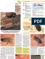 Wildlife Fact File - Insects & Spiders - Pgs. 51-60