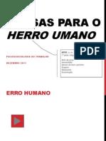 causadoerrohumanog5final-120112051249-phpapp02