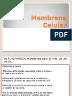 Membrana Celular 2011