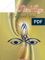 The Third Eye-Sant Singh Maskeen (English)