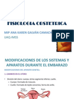 Fisiologia Obstetrica Gine Mips