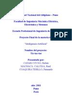 infomeGato.pdf