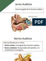 Neuroanatomia Del Octavo Par
